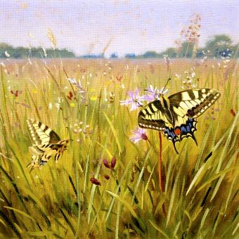 NEW ! BOTANIC GOLD  card range : BB 09  SWALLOWTAIL