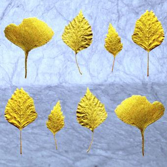 Botanic Gold  NEW !  card range : LP19  Gold leaves 4 (grey)