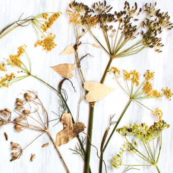 Botanic Gold  NEW !  card range : FP39 FENNEL - NEW !