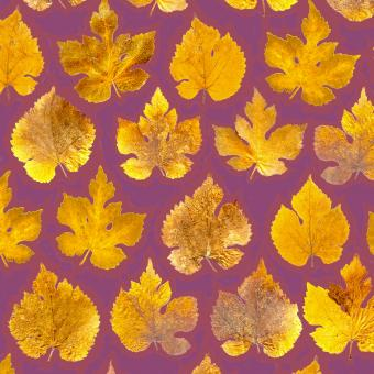 Botanic Gold  NEW !  card range : LP20  Mulberry