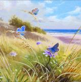 British Butterflies - New ! card range : BB 14   COMMON BLUE