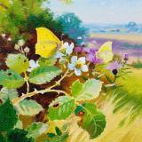 British Butterflies - New ! card range : BB20 BRIMSTONE  - New