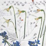 Flower Press -all seasons card range : FP16 New! SNOWDROPS 1