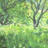 Landscapes card range : LD 34 COW PARSLEY